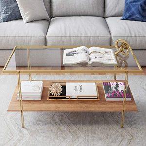 Gold Rustic Coffee Table Oak Storage Shelf with Sleek Brass Metal Legs